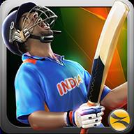 T20板球冠军3D图标
